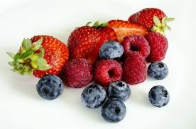 berries-1225101_1920